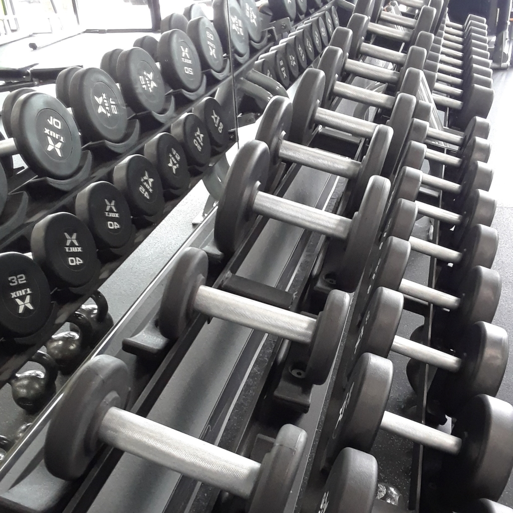 A row of hand weights at my local gym